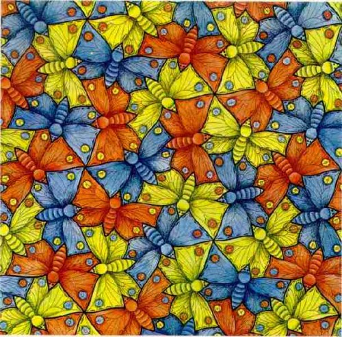 moth_tessellation